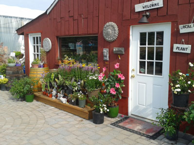 Ecoasis Garden Center Your source for environmentally friendly