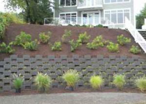 Smartslope Living Wall — Severna Park