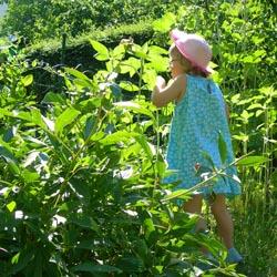 gardeningwithchild1