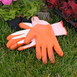 gloves_250x250