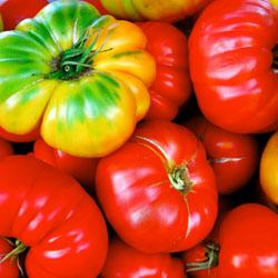 tomato-pepper-2